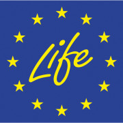 life_official_logo